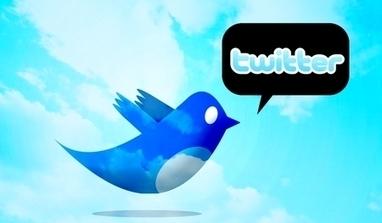 Twitter s'adapte à la censure, les internautes appellent au blackout- Ecrans | Webmarketing, Medias Sociaux | Scoop.it
