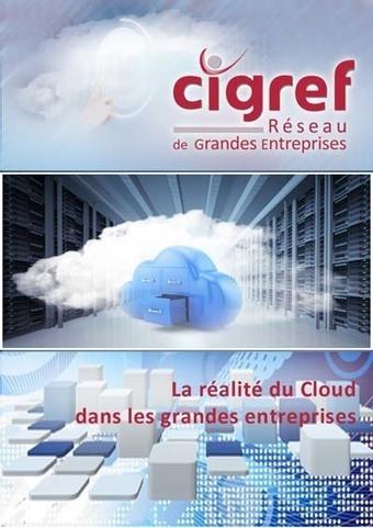 Rapport CIGREF : la réalité du Cloud dans les grandes entreprises | CIGREF | Cyber Assurance | Scoop.it