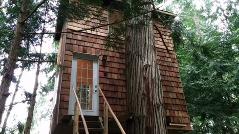 This Tiny Home Is a Grown-Up Treehouse | Strange days indeed... | Scoop.it
