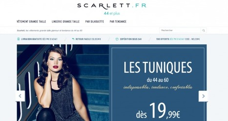 [Business développement] Les 3 dernières annonces du web FrenchWeb.fr   e-marketing strategies 10   Scoop.it
