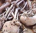 Les squelettes préhistoriques du Sahara | Détective de l'étrange | Scoop.it