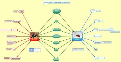 Mindmapping à l'école : comparer avec une carte double-bulle | Penser, réfléchir, planifier avec la carte heuristique, les cartes conceptuelles | Scoop.it