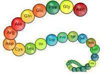 Les molécules d'émotion - Pourquoi vous sentez vous comme vous vous sentez ? | Developpement personnel | Scoop.it
