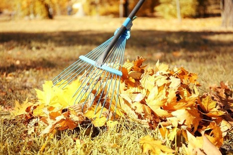 A Quick Guide to Safe Fall Yard Cleanup, Sans an Urgent Care Moment   U.S. HealthWorks Spokane (North Side)   Scoop.it