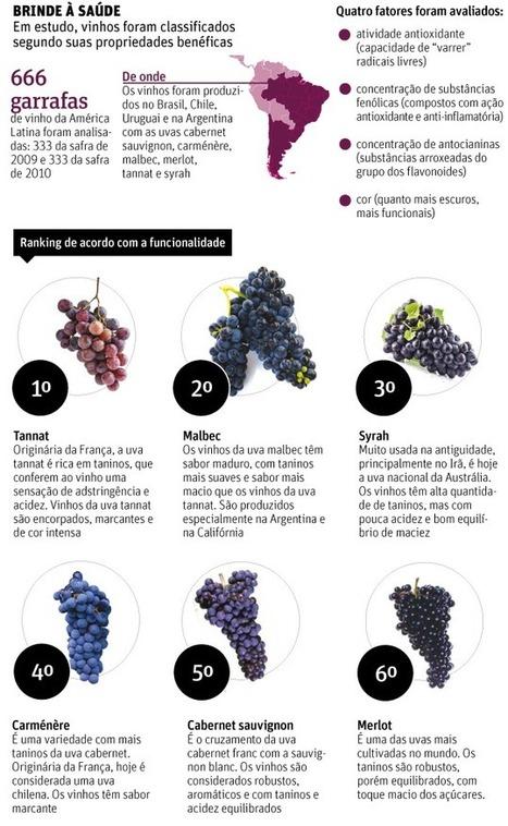 Folha de S.Paulo - Equilíbrio e Saúde - Brasileiros criam ranking de vinhos de acordo com seus benefícios à saúde - 24/12/2013   Vinhos Portugueses   Scoop.it