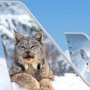 Frontier Swaps Philadelphia for Trenton, Continues Airline Trend to Alternative Airports | Airline Industry Innovations | Scoop.it