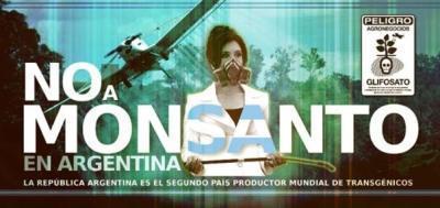 Monsanto : un modelo que envenena – Luego de las movilizaciones en todo el mundo contra Monsanto el pasado 17-S, en Argentina se prepara el2-D | Sudamericana | Scoop.it