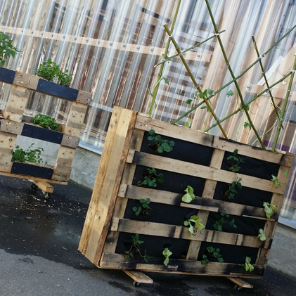 [Nantes Ville Comestible] Bio-T-Full lance son Farm Lab | compost au pied des immeubles, jardins partagés | Scoop.it