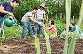 L'agriculture et ses valeurs démocratiques | (Culture)s (Urbaine)s | Scoop.it