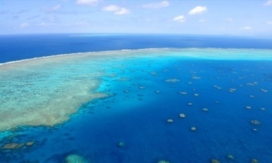 Clive Palmer's refinery charged over alleged Great Barrier Reef toxic spill | sustainability | Scoop.it