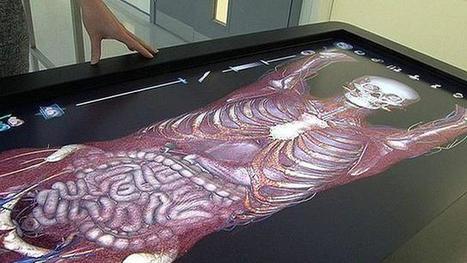 BBC Mundo - Noticias - Aprender anatomía con un cadáver virtual | educacion-y-ntic | Scoop.it