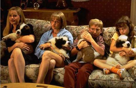 J'ai créé Suzi Handicap Animal, une association pour animaux ... - madmoiZelle.com | Génération en action | Scoop.it