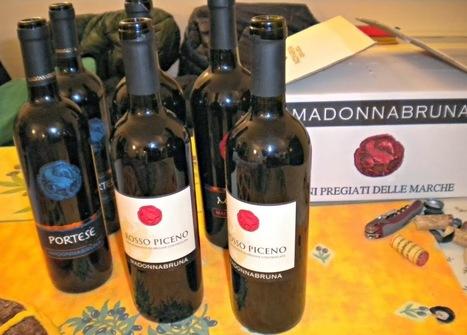 AvvinatoreBloggato: Vini Azienda Agricola Madonnabruna a Fermo | Vinitours | Scoop.it