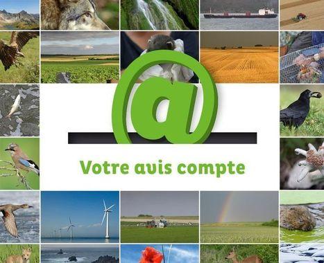 Environnement : Les citoyens invités à s'exprimer par le web ! - News Press (Communiqué de presse) | RSE, Sécurité & Environnement | Scoop.it