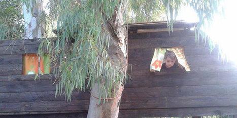 L'Asilo nel Bosco: il nido che educa i bambini all'aria aperta | Mamme&Co | Scoop.it