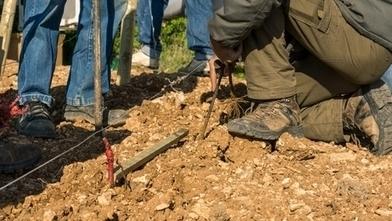 En Bourgogne, des Actions Courtes Qualifiantes boostent les recrutements en viticulture   ANEFA   metiers agriculture   Scoop.it