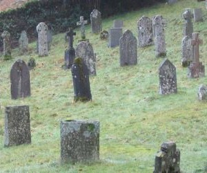 Waiting for the demise of Google+? Don't hold your breath | G+ Smarts | Scoop.it