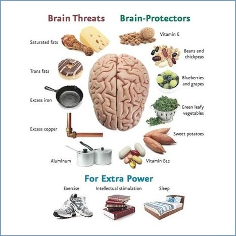 Infographic-Brain-Threats-Protectors.jpg (628x628 pixels) | WELLNESS | Scoop.it