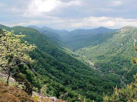 Trails make conservation tangible - BlueRidgeNow.com | Conservation Biology, Genetics and Ecology | Scoop.it