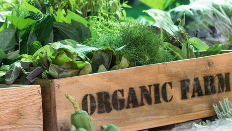 How to scale organic local marketing | Online Marketing Resources | Scoop.it