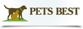 #1 Reason It's Dangerous to Fly with Pugs | Pet Health Tips | Scoop.it