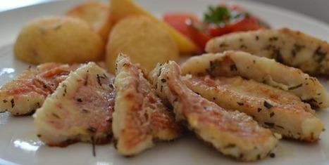 Barbounia Red Mullet Recipe - Kali Orexi | Open Cyprus | Scoop.it