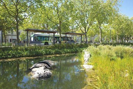 Plus verte la ville | Jardins urbains | Scoop.it