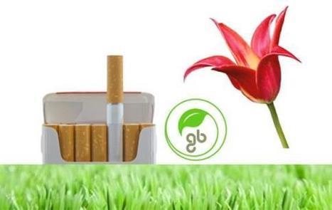 Arriva la sigaretta biodegradabile che diventa concime per il giardino - concime, sigaretta biodegradabile, Greenbutts, cotone organico, canapa | L'isola del Bio | Scoop.it
