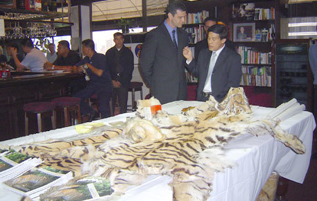 Vietnam proposes legalising use of tiger parts in traditional medicines | Wildlife Trafficking: Who Does it? Allows it? | Scoop.it