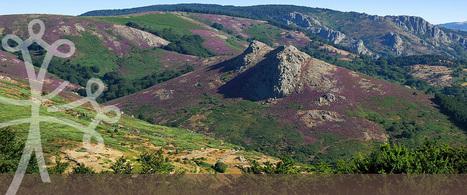 Marché de producteurs - Parc naturel régional du Haut-Languedoc | Parc régional du haut Languedoc | Scoop.it