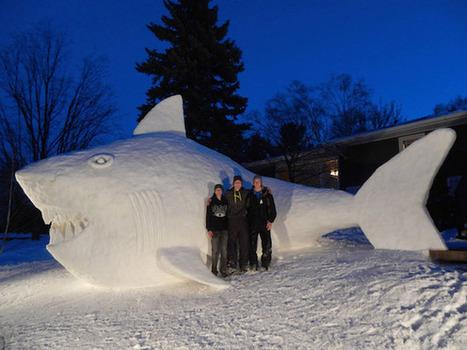 Cada año, tres hermanos construyen una figura gigante de nieve en su jardín   Novedades Caracool   Scoop.it