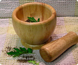 Chinese herb eradicates cancer in 40 days, says new research | Freedom and Politics | Scoop.it