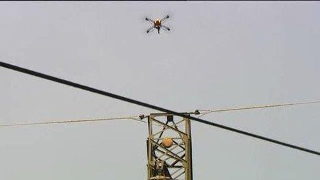 Dans l'Aveyron, des drones sont utilisés pour exterminer les frelons asiatiques | Une nouvelle civilisation de Robots | Scoop.it