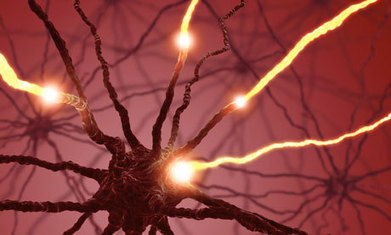 How to treat your brain during revision time | CETIS 31 ACOPAÑAMIENTO DOCENTE | Scoop.it