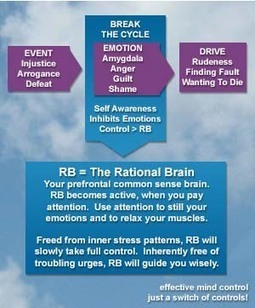 What Causes Emotions?   Brain and Emotions   Scoop.it