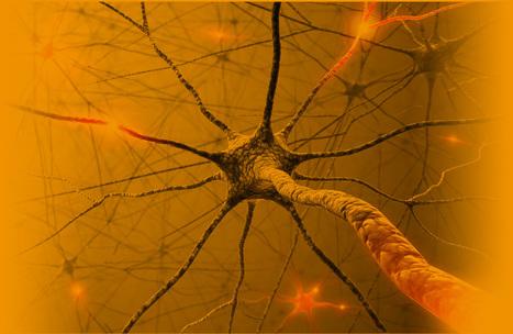 Brain Games   Cognitif   Scoop.it
