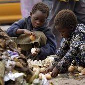 L'Afrique subsaharienne et l'Asie du Sud sont les zones les plus sous-alimentées   Questions de développement ...   Scoop.it