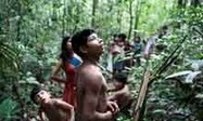 'They're killing us': world's most endangered tribe cries for help | Brazilianisms | Scoop.it