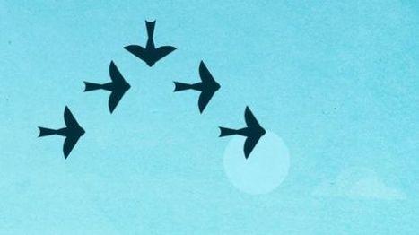 App Lumosity im Test: Hanteln fürs Hirn | Social Media ePower Marketing | Scoop.it