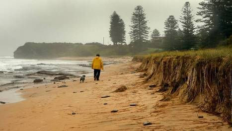 Coastal hazards a real headache - Illawarra Mercury | Biophysical Environment | Scoop.it