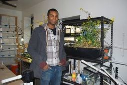 Astorian grew his organic farm in LIC - Queens Chronicle | Vertical Farm - Food Factory | Scoop.it