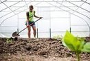 The growth of the urban farming movement: Flint River Farm is one of more than 200 urban gardeners partnering with the Edible Flint co-op | Vertical Farm - Food Factory | Scoop.it