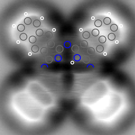 IBM scientists image the charge distribution within a single molecule | KurzweilAI | Smalley's Small Problem | Scoop.it