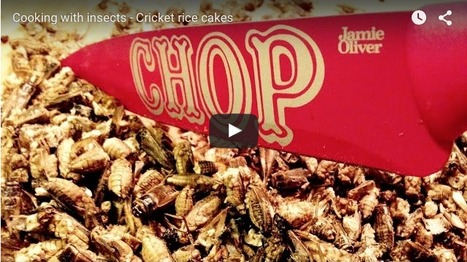Insects on supermarket shelves - HealthGauge.com | Entomophagy: Edible Insects and the Future of Food | Scoop.it