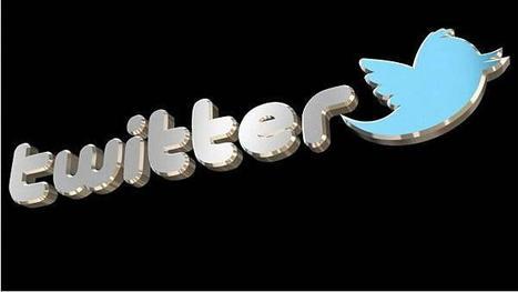 Twitter accidentally resets passwords | TSA-Social Media | Scoop.it