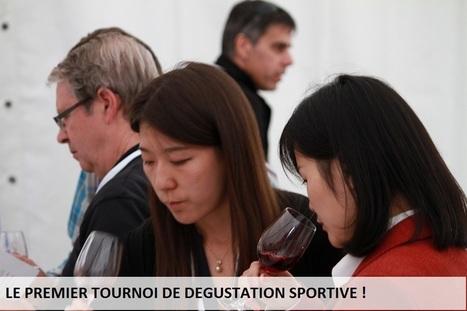 Open Chateau Piron - Tournoi de dégustation de vins fins - 6 juin 2015 | Oeno-digital | Scoop.it