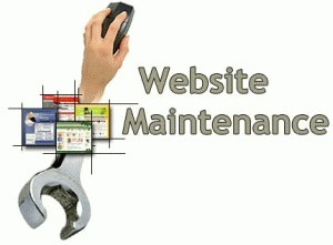 How do Web Development Companies develop Websites? | Website Maintenance India | Scoop.it