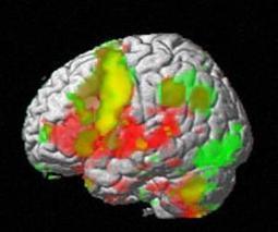 Toward an Integrative Science of Mind | Contemplative-Practice | Scoop.it