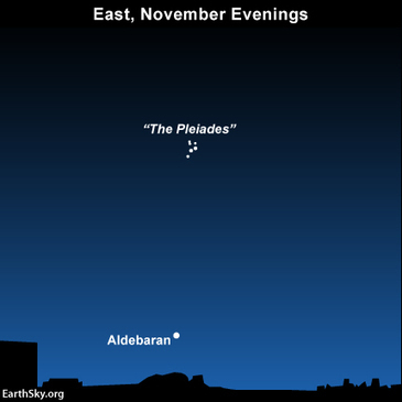 November is the month of the Pleiades | EarthSky.org | Active learning | Scoop.it