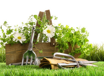 Calendrier jardin: mars! Entretenir le jardin! | Aménagement & Finitions | Scoop.it
